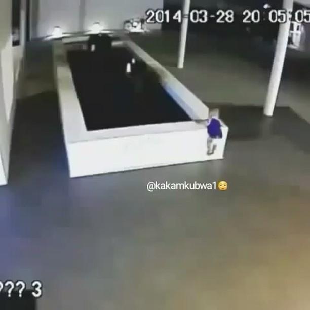 خطر,البرك