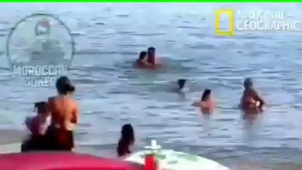 سباحه,بحر